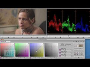 Avid Screencast #27: Color Correction Basics VI – Matching Two Shots Part II