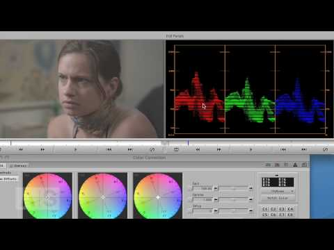 Avid Screencast #22: Color Correction Basics I – Laying the Groundwork