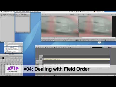 Avid Screencast #04: Changing the Field Order