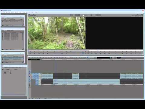 Singular Software PluralEyes for Avid Media Composer
