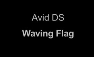 Waving Flag in Avid DS