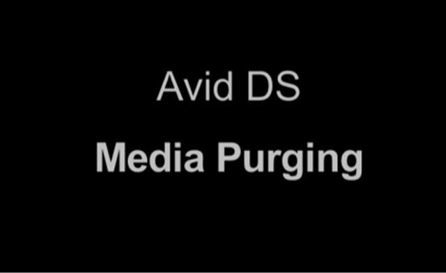 Avid DS Media Purging
