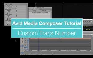 EVF Tutorial – Custom Track Number in Avid Media Composer