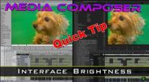 Media Composer Quick Tip – Interface Brightness