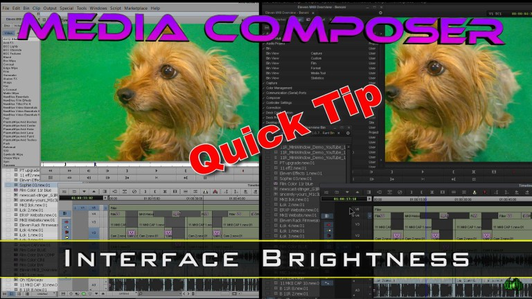 Media Composer Quick Tip – Interface Brightness