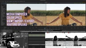 Media Composer | Display Color Space