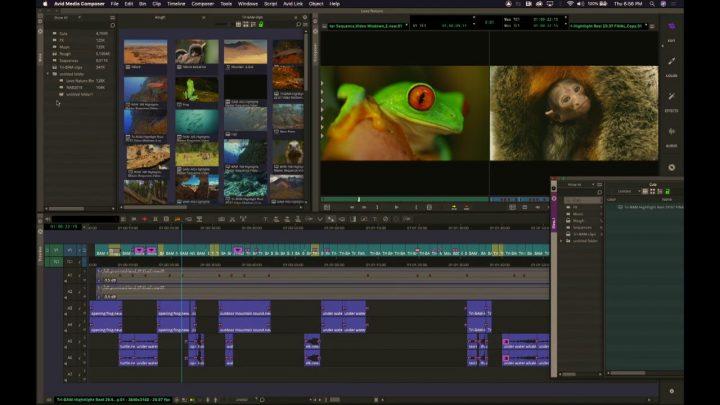 Media Composer 2019: Bin Monitor, Edit Monitor Setup