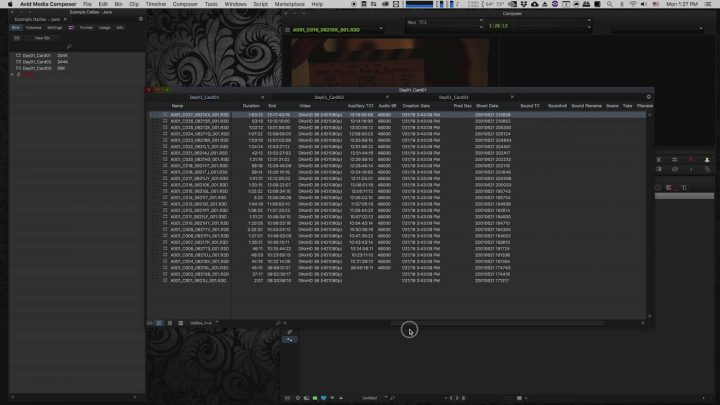 Creating Dailies in Davinci Resolve for Avid Media Composer (Part 5/7)