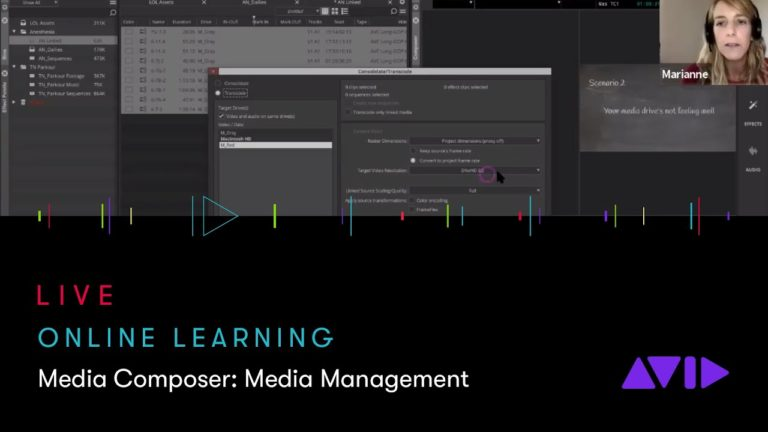 Avid Online Learning — Media Composer: Media Management, never lose your media again