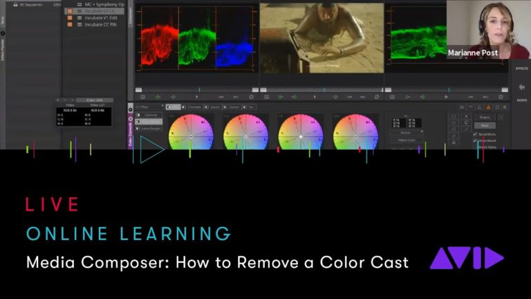 Avid Online Learning — Media Composer: How to Remove a Color Cast